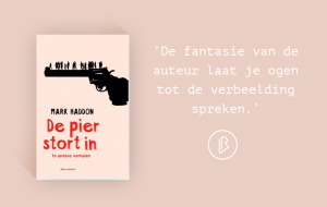 Recensie: Mark Haddon – De pier stort in