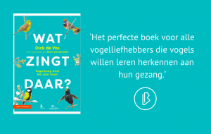 Recensie: Dick de Vos – Wat zingt daar?